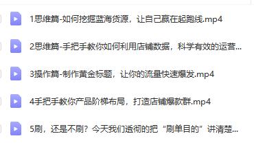 【更新中】天猫淘宝爆款运营实操技术系列课